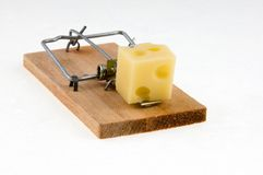 Mäusefalle mit Käse. Lizenzfreie Stockbilder