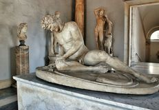 Museum Capitolini. Dying Gaul Stock Photography