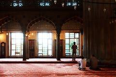 Muselman som ber i den blåa moskén, Turkiet Arkivfoto