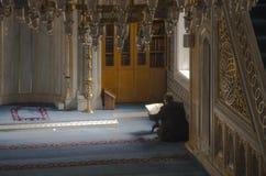 Muselmaner finner fred, genom att läsa quranen på moskén Arkivfoton