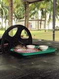 Musen i plattan äter maten cambodia royaltyfri bild