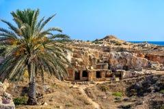 Museo archeologico sul Cipro Immagini Stock Libere da Diritti