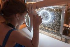 Museo de la abeja en el pueblo de Pastida Grecia 30/05/2018 6 años de la muchacha están aprendiendo sobre la vida secreta de abej imágenes de archivo libres de regalías
