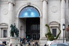 Museo de la historia natural foto de archivo libre de regalías