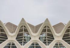 Museo de las ciencias  in the City of Arts and Science, Valencia Royalty Free Stock Photos