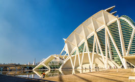 Museo de les Ciencies艺术和科学城市的普林西比费莉佩在巴伦西亚,西班牙 免版税库存图片