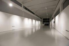 Museo de Torino - de Italia - de Ettore Fico Foto de archivo libre de regalías