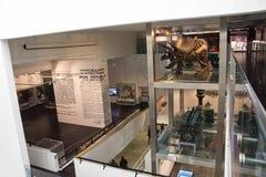 Museo de Ulster en Belfast fotos de archivo libres de regalías