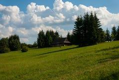 Museo del villaggio slovacco, je del ¡ del hà di JahodnÃcke, Martin, Slovacchia Immagini Stock