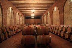 Museo del vino rojo Fotografía de archivo libre de regalías