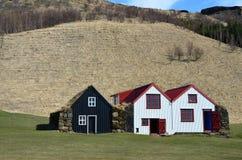 Museo dell'aria aperta con le vecchie case islandesi rurali tipiche Fotografia Stock Libera da Diritti