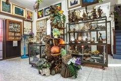 Museo dell'insetto del mondo Immagini Stock Libere da Diritti