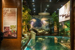 Museo delle gole di Chongqing Three Gorges Museum Three della manifestazione di storia il ` magnifico di Three Gorges del ` Immagini Stock