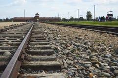Museo di Auschwitz Birkenau Fotografia Stock Libera da Diritti