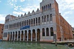 Museo di Storia Naturale i Venedig, Italien Royaltyfri Foto