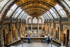 Museo di storia naturale a Londra Fotografia Stock
