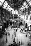 Museo en obscuridad Fotografía de archivo