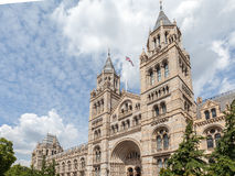 Museo Londra Engaldn di storia naturale Fotografie Stock