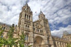Museo Londres de la historia natural foto de archivo