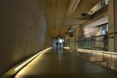 Museo Londres de la historia natural del capullo Imagen de archivo libre de regalías