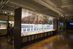 Museo nazionale della natura e della scienza nel Giappone Immagine Stock