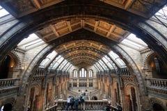 Museo nazionale di storia a Londra Fotografia Stock