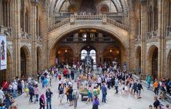 Museo nazionale di storia, Londra Immagini Stock Libere da Diritti