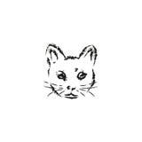 Museruola del gatto Fotografie Stock