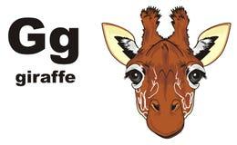 Museruola della giraffa e del ABC Fotografia Stock Libera da Diritti
