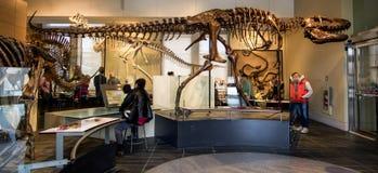 Museu canadense da natureza Fotografia de Stock