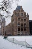Museu da história de Narural, Londres, na neve Foto de Stock