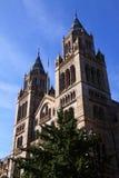 Museu da História natural imagem de stock royalty free