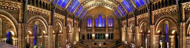 Museu da História natural, Londres Foto de Stock