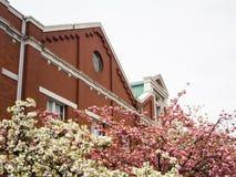 Museu da hortelã de Japão Foto de Stock