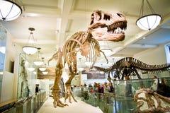 Museu de arte metropolitano, o 15 de maio de 2011 em novo Imagens de Stock