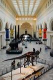 Museu de The Field em Chicago fotos de stock royalty free