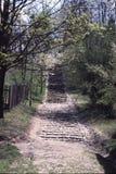 Museu do ar livre em Nowgorod, escadas de pedra Imagem de Stock