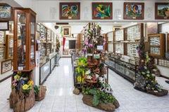 Museu do inseto do mundo Fotografia de Stock Royalty Free