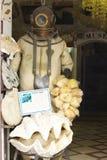 Museu dos shell Fotografia de Stock Royalty Free