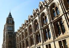 Museu Londres da História natural Fotografia de Stock Royalty Free