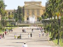 Museu Paulista Fotografia de Stock Royalty Free