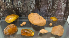 Museum of amber Royalty Free Stock Photography