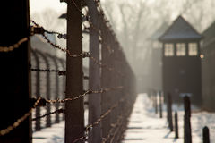 Museum Auschwitz - Holocaust Memorial Museum. Anniversary Concentration Camp Liberation Barbed wire around a concentration camp. royalty free stock image