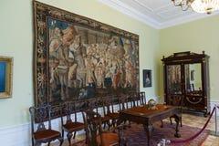 Museum av amber Arkivfoton
