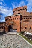 Museum av bärnsten i den tyska fortDer donaen royaltyfri bild