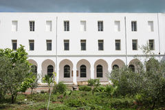 Museum av Carthage i Tunis Fotografering för Bildbyråer