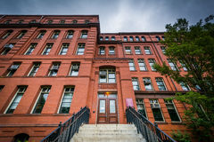 The Museum of Comparative Zoology, at Harvard University, in Cam Royalty Free Stock Photography
