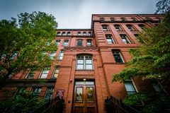 The Museum of Comparative Zoology, at Harvard University, in Cam Royalty Free Stock Photos