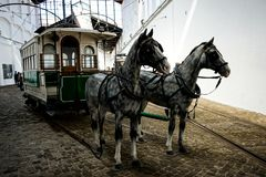 Museum des Elektroautos in Porto lizenzfreie stockfotografie