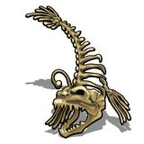 Museum exhibit the skeleton of a fish anglerfish isolated on white background. Vector illustration. Museum exhibit the skeleton of a fish anglerfish isolated on Stock Photos